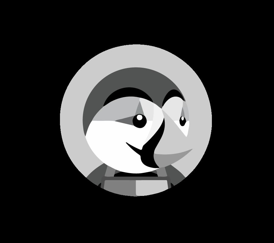 developpement-web-prestashop-2-saint-etienne-lyon-900-x-800-px