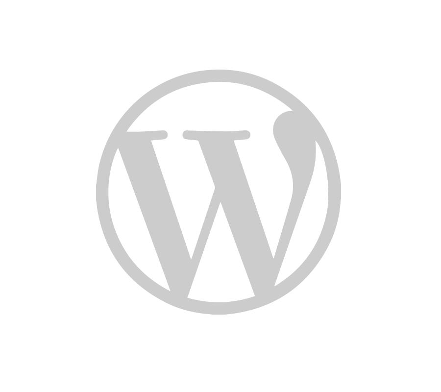 developpement-web-wordpress-saint-etienne-lyon-900-x-800-px